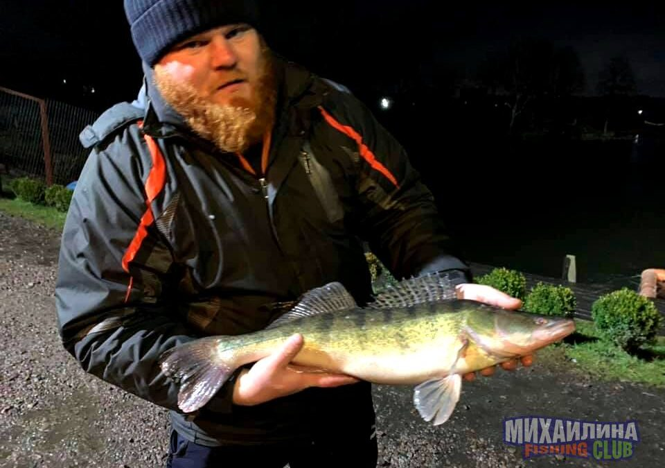 Stocking with pike perch 12/27/2019