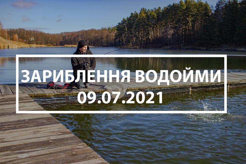 Зарыбление водоёма карпом 09.07.2021
