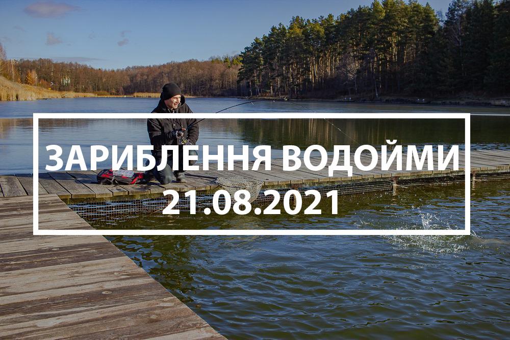 Зарыбление водоёма карпом 21.08.2021